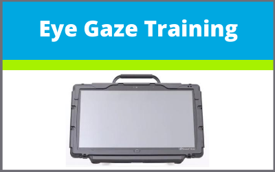 Free & Paid Eye Gaze Training